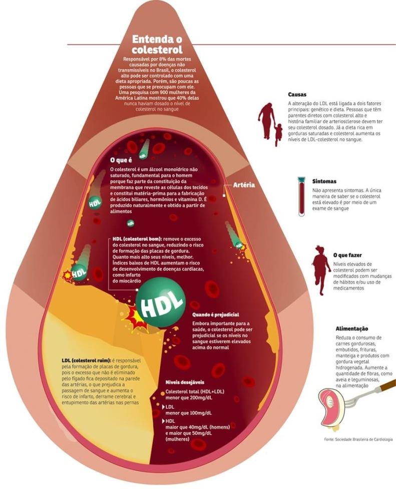entenda-o-colesterol1
